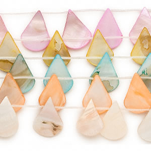 Bead motherofpearl shell dyed assorted colors 30x23mm petal